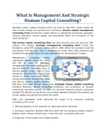 What Is Management And Strategic Human Capital Consulting?