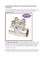 Forged Steel Lift Check Valve: The Important Details You Should Know About!