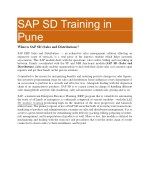 SAP SD Training PDF