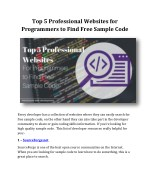Top 5 Professional Websites for Programmers to Find Free Sample Code