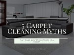 5 Carpet Cleaning Myths that Make Carpet Maintenance a Misery