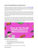 How to fix Email Notifications in Woocommerce?
