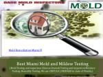 Best Miami Mold and Mildew Testing