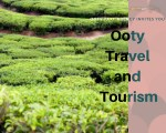 Ooty Tours & Travels