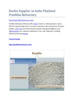 Kaolin Supplier in India Thailand Pratibha Refractory