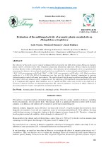 Evaluation of the antifungal activity of aromatic plants essential oils on Phytophthora citrophthora