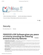Erp Security Issues | Pridesys IT Ltd