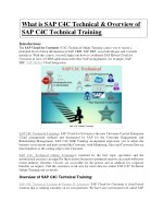 SAP BO BI Training PDF