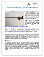 Sinuscopes Endoscope Industry Global Market Trends, Share, Size and 2025 Forecasts Report