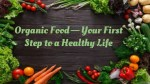 Organic Food — Your First       Step to a Healthy Life