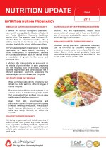 Nutrition During Pregnancy - flyer