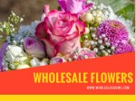 Perfect Wholesale Flowers for Any Event