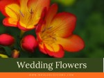 Different Varieties of Wedding Flowers