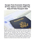 Escape From Economic Disparity Of Your Native Country With The Help Of Fake Passport USA