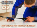 PROFESSIONAL PEST CONTROL GOLD COAST