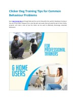 Clicker Dog Training Tips for Common Behaviour Problems