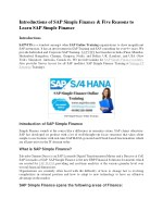 SAP Simple Finance PDF