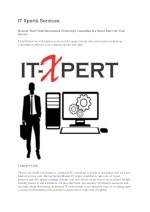 IT Xperts Services