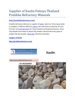 Supplier of Kaolin Pattaya Thailand Pratibha Refractory Minerals