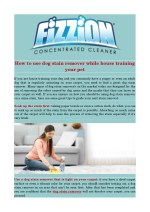How to use dog stain remover while house training your pet