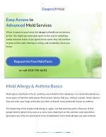 Dangers of Mold | Tests, Treatment, Removal in Los Angeles