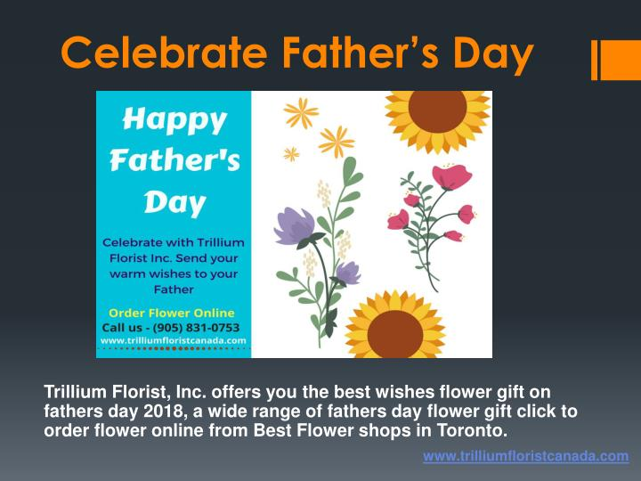 celebrate father s day n.