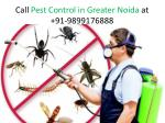 Bset Services Provide Pest Control in Greater Noida by ZX Pest Control