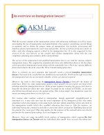 An overview on Immigration lawyer