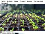 Seed Industry Outlook, Global Seed Market Size-Ken Research
