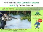 Hire the Best Pest Control in Greater Noida by ZX Pest Control