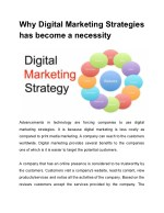 Why Digital Marketing Strategies has become a necessity