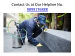 Hire the ZX Pest Control for Your Safety from Pests