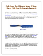 Safeguard The Skin and Mane Of Your Horse With Best Ergonomic Products