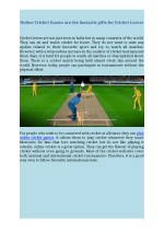 Online Cricket Games are the fantastic gifts for Cricket Lovers