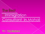 The Best immigration consultant in Mohali