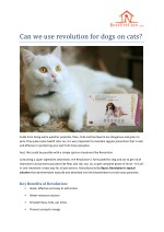 Can we use revolution for dogs on cats?