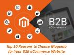 Top 10 Reasons to Choose Magento for Your B2B eCommerce Website