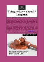 The Most Important Things about IP Litigation
