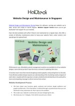 Website Design and Maintenance in Singapore