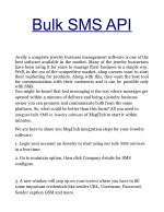 Premium SMS API For Business To Generate Leads