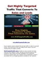 Get Highly Targeted Traffic That Converts To Sales and Leads