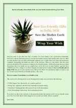 Best Eco-Friendly Gifts in Delhi, Ncr - Save the Mother Earth with Wrap Your Wish