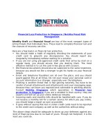Financial Loss Protection in Singapore | Netrika Fraud Risk Management