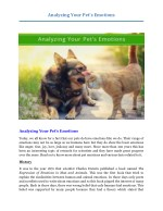 Analyzing Your Pet's Emotions ?