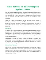 Take Action in Wolverhampton Against Pests