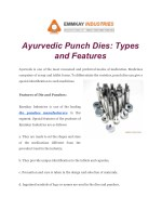 Ayurvedic Punch Dies: Types and Features