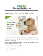 How To Treat Hot Spots On Dogs