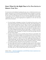 Know When It is the Right Time to Use Tree Service to Remove Your Tree