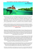 Travel Guide for a Solo Trip to Andaman and Nicobar Island
