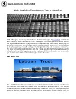 A Brief Knowledge of Some Common Types of Labuan Trust